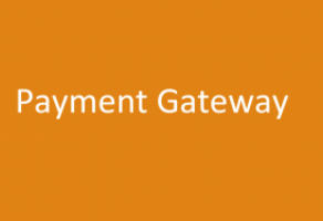 Accept Website Payments with our payment gateway