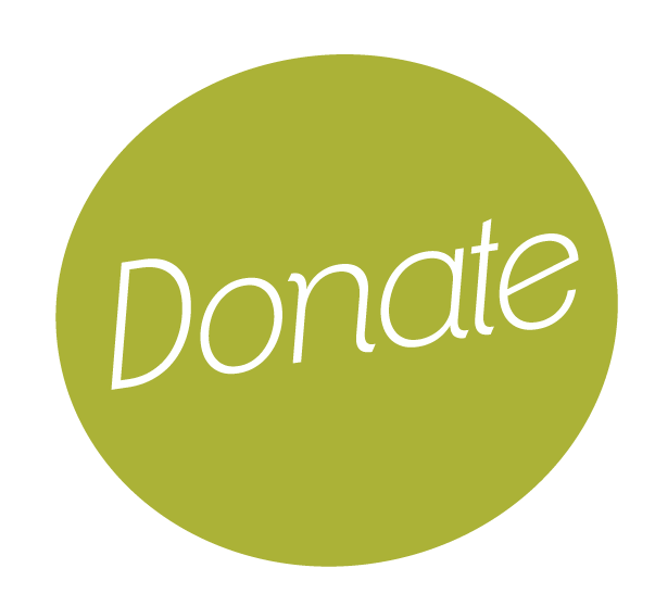 Stripe Donation Button   Payolee